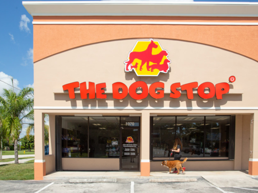The Dog Stop